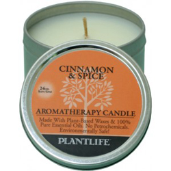 Plantlife Candle - Cinnamon & Spice aromatherapy, candles, all natural, petroleum free, essential oils, natural candles, plant based wax, cinnamon, spice,